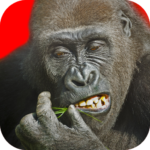 Flying Gorilla MOD Unlimited Money 2.143