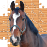Jigsaw Horses MOD Unlimited Money 2.0